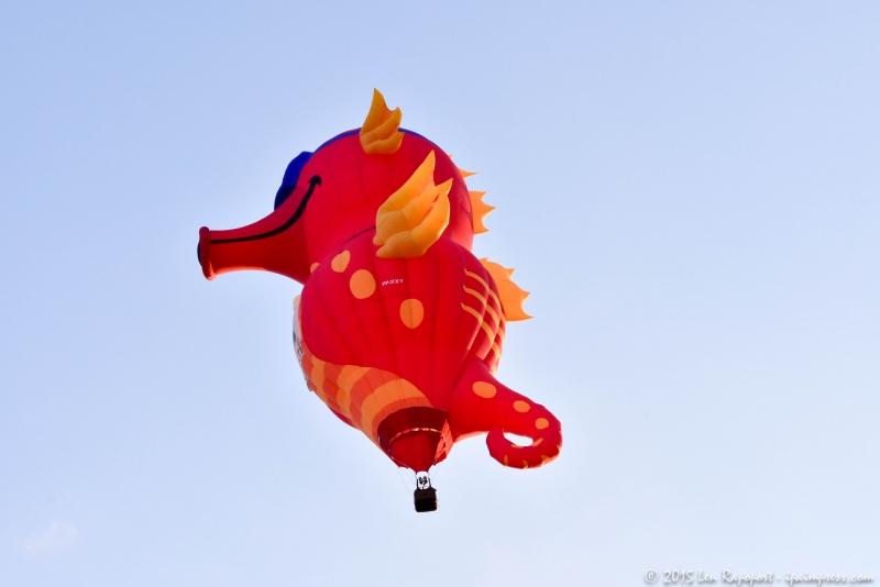 2015 Balloon-2-16
