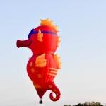 2015 Balloon-2-11