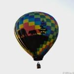 2015 Balloon-2-35