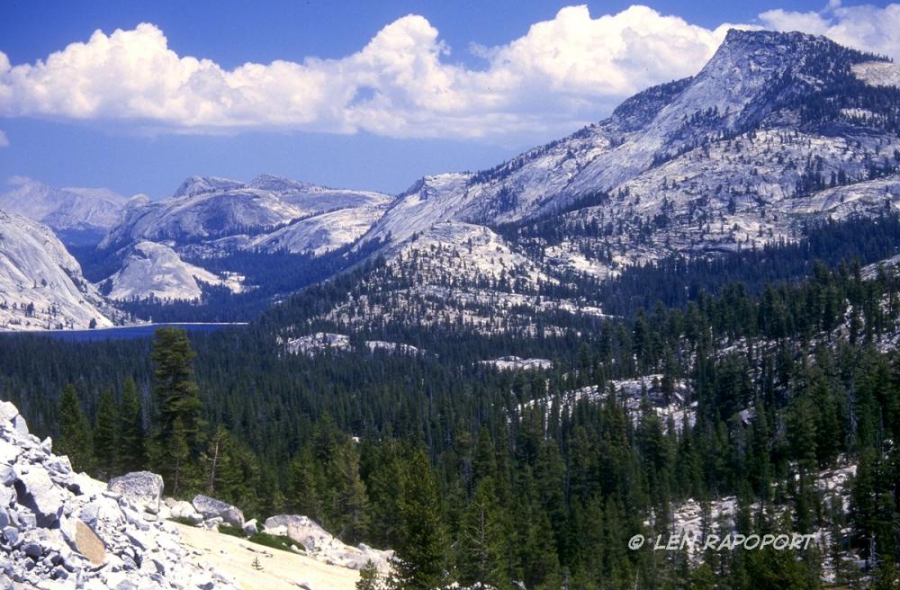 Yeosemite National Park, Calif.