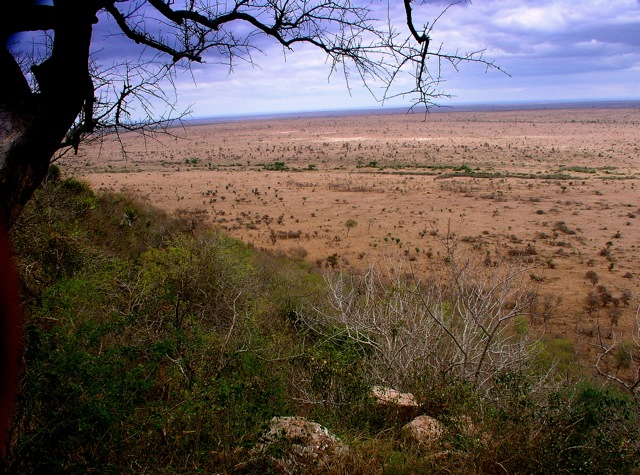 South African Plains