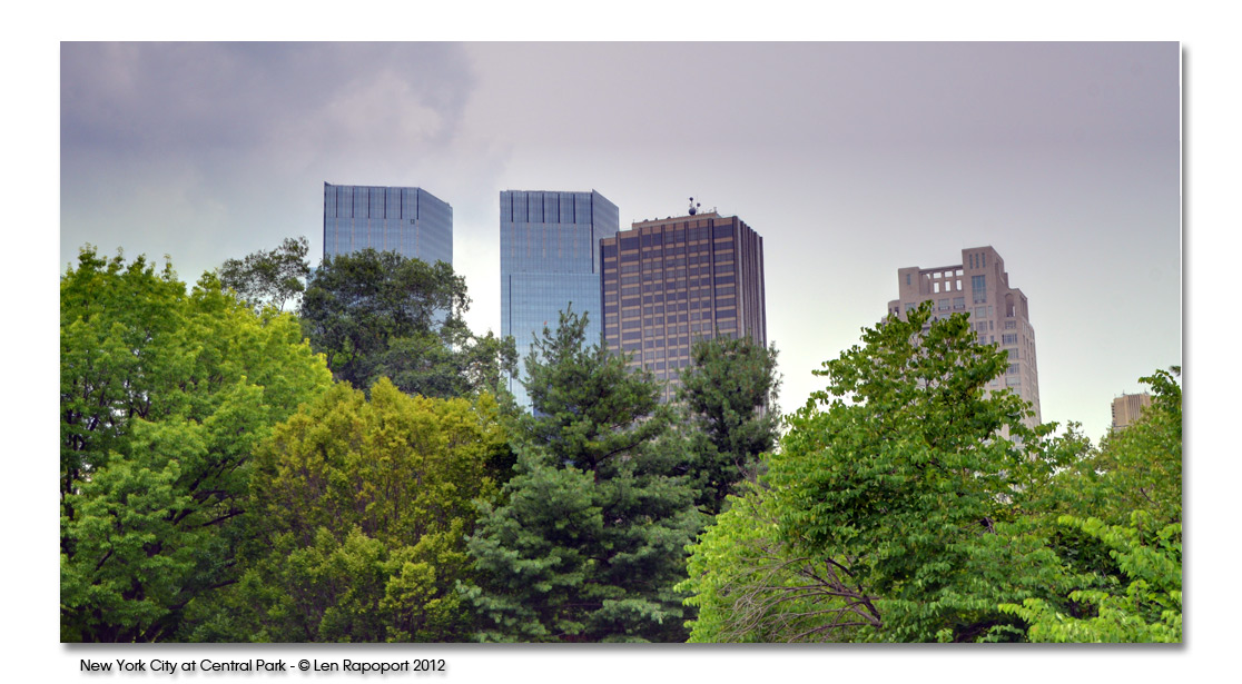 Central Park View - 2