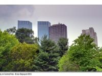 Central Park View - 2