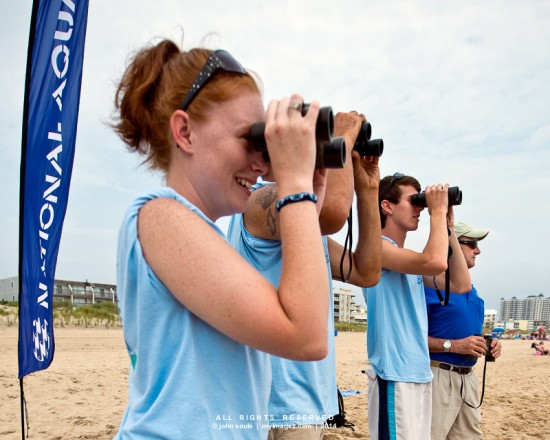 National Aquarium volunteers scan the waters in search for dolphins