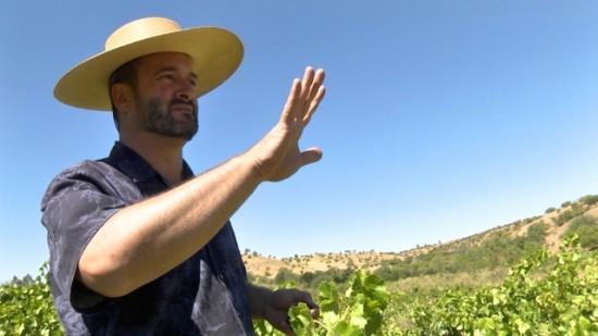 Derek Mossman Knapp, MOVI co-founder, Independent vintner, Garage Wine Co.