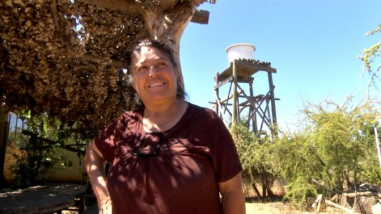Ploughman farmer's wife at their property in Sauzal, Maule, Valley, Chile