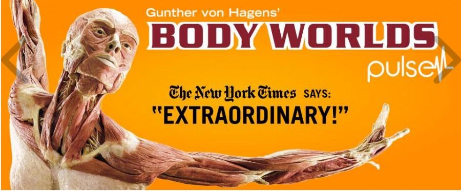 Body_Works